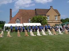 Dog Show at Nurstead Court